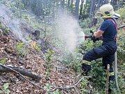 Požár v lese mezi Rybništěm, Chřibskou a Doubicemi.