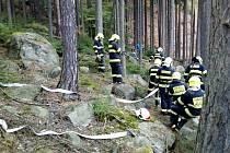 Požár v lese v Bynově.