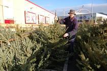 Vánoční stromky jsou již v prodeji
