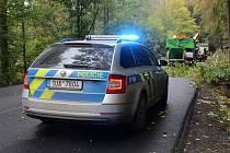 Dopravní nehoda. Policie. Ilustrační foto.