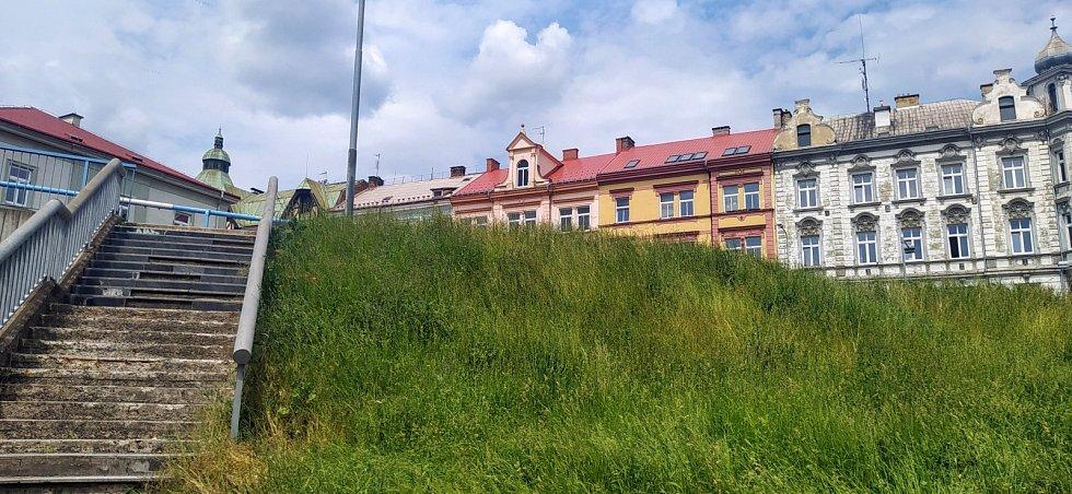 Přerostlá tráva v Děčíně u Nového mostu.