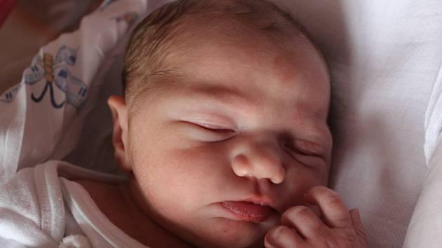 Anežka Balvínová se narodila Heleně Balvínové z Valkeřic 29. srpna ve 20.49 v děčínské porodnici. Měřila 49 cm a vážila 3,16 kg.