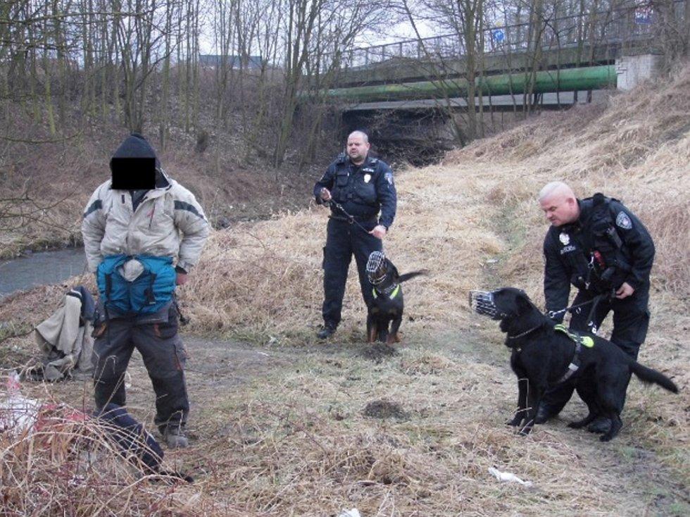 Děčínští strážníci dopadli na začátku týdne dalšího člověka, který ve městě zakládal černé skládky.