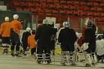 MEDVĚDI JSOU NA LEDĚ. Hráči HC Děčín polykají první tréninkové jednotky na zimním stadionu.