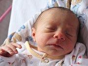 Sofinka Milatová se narodila Lucii Veselé z Děčína 31. ledna v 8.22 v děčínské porodnici. Vážila 2,35 kg.