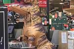 Dinosaurus ve varnsdorfském Kauflandu.