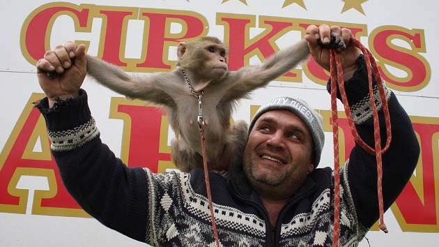 OPIČKA je také součástí programu cirkusu Carini.