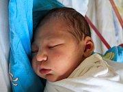 Viktorie Davidová se narodila Světlaně Davidové z Děčína 18. dubna ve 14.48 v děčínské porodnici. Měřila 54 cm a vážila 3,68 kg.