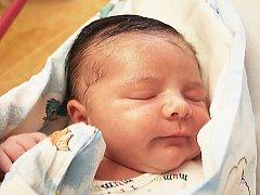 Sofinka Grundzová se narodila Franzisce Dleskové z Děčína 20. července v 7.27 v děčínské porodnici. Měřila 47 cm a vážila 3,09 kg.