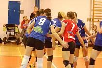 MNOHO RADOSTI si děčínské volejbalistky proti Plzni neužily, oba zápasy doma prohrály.