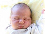 Dominik Salfický se narodil Dominice Salfické Vellekové z Varnsdorfu v pondělí 15. května ve 23.08. Měřil 51 cm a vážil 3,72 kg.
