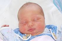 Jitce Pejčochové z Rumburka se 17.srpna v 8.14 v rumburské porodnici narodil syn Tomáš Pejčoch. Měřil 50 cm a vážil 3,43 kg.