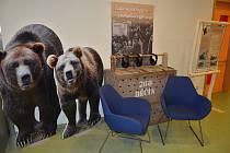 Výroční výstava děčínské zoo je k vidění v knihovně.