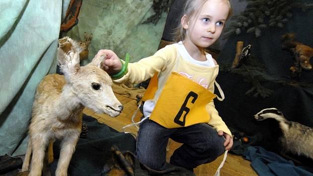 Šikovnost a další znalosti ukázali budoucí žáci u zápisu do školy v Chřibské. Sportovně, ale i jinak nadaná Natálie Jehličková.