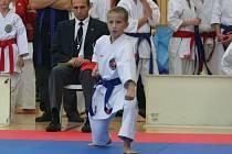 SPORT RELAX KRALOVAL. Na snímku desetiletý Daniel Beránek.
