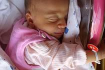 Gabriele Jindřiškové se narodila 5.10.2012 v 18:45 dcera Andrejka Vázlerová. Vážila 3,24 kg a měřila 52cm.