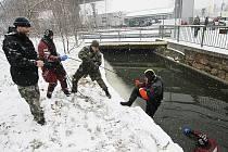 Potápěči z krajské zásahové jednotky PČR Ústí nad Labem prohledávali od středečního podvečera řeku Ploučnici v Děčíně.