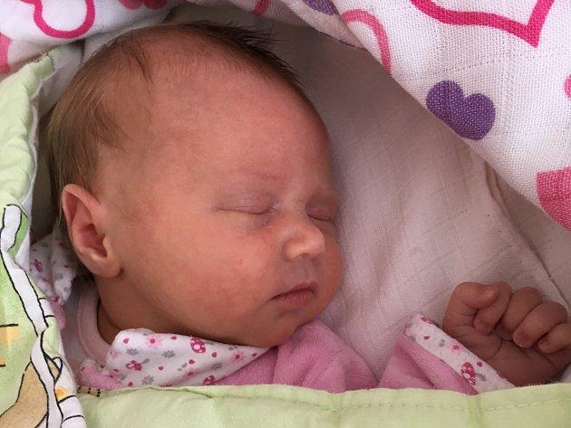 Zoe Tomanová se narodila Hance a Honzovi Tomanovým z Děčína 11.dubna v 8.07 v děčínské porodnici. Vážila 3,21 kg a měřila 50cm.