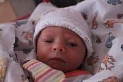 Anežka Hauptmanová se narodila Šárce Hauptmanové z Děčína 28. listopadu v 6.32 v děčínské porodnici. Vážila 2,7 kg.