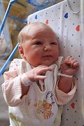 Michaele Lukešové z Nové Olešky se 27. června ve 22.49 v děčínské porodnici narodila dcera Barunka Lukešová. Měřila 54 cm a vážila 3,7 kg.