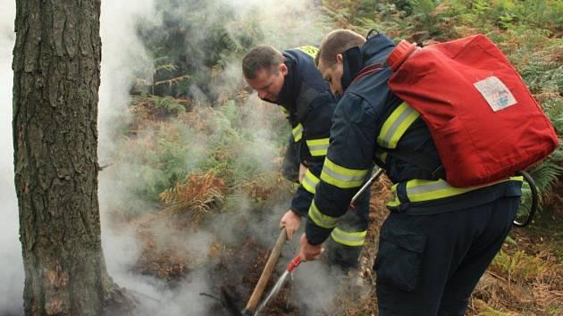 Požár lesa na Maxičkách.
