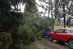 Pád stromu na auto v Boleticích.