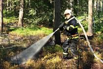 Požár lesa nad Jalůvčím.