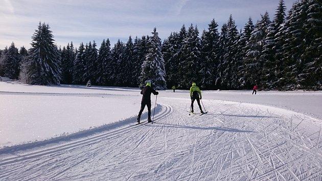 Vběžkařském areálu Schöneben je denně upravováno 79km stop.