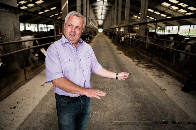 """""""Čím méně jsou krávy v kontaktu s člověkem, tím je to lepší,"""" říká Karel Bednář."""