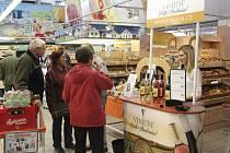 Košt Svatomartinských vín v českobudějovickém Ternu