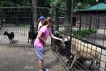 """""""Veškeré úsilí a péče o zoo se nám vyplatily,"""" míní ředitel Zoo Hodonín"""