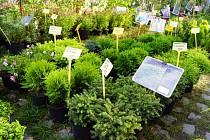 Zahrada Čech – jeden z největších zahradních veletrhů svého druhu v Česku
