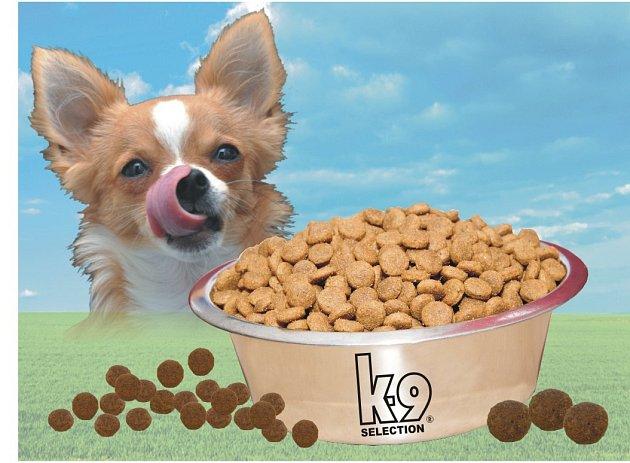 Správně vybrané krmivo je základ zdraví a spokojenosti psa.