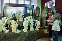Muzeum Karlova mostu ve spolupráci s Rytířským řádem Křižovníků s červenou hvězdou pořádá v Praze již čtvrtý ročník výstavy Betlémy u Karlova mostu.  Letošní novinkou je Vltavský rybí betlém. Dominantou je 200litrové akvárium s živými kapry.