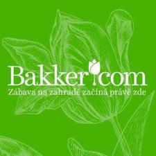 darky-od-bakker-20171108