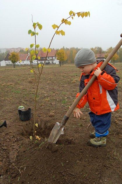 POROSTOU SPOLEČNĚ. Jedním zprvních, kteří si zasadili svůj strom, byl imalý Kuba zJirkova sotcem. Jejich lípa bude součástí aleje ve skanzenu Stará Ves.