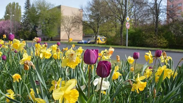 Jaro v Chomutově.