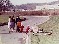 Tentokrát se podíváme do historie oblíbeného chomutovského zooparku