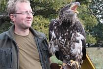 SOKOLNÍK Jan Brož byl se svou ukázkou součástí programu připraveného pro adoptivní rodiče v zooparku.