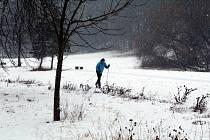 Na běžky se dá v Chomutově vyrazit přímo z města.