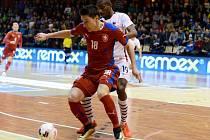 Michal Belej v zápase s Francií.