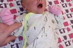 Danielka Dittrichová se narodila 31. října 2018 v 15.34 hodin mamince Lence Dittrichové a otci Miloslavovi Haasovi.