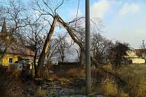 Strom, který vichřice zlomila u Želiny na Kadaňsku, padl na elektrické vedení.