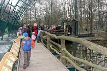 TENKOZOBCE OPAČNÉHO uvidí návštěvníci zooparku již zítra v nové průchozí ptačí voliéře.