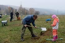 Sousedská alej mezi Orasínem a Boleboří. Svou jablůňku, třešeň nebo hrušeň si přišlo zasadit na devadesát lidí.