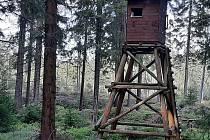 Pozor na krátkodobý zákaz vstupu do městských lesů na Božím Daru.