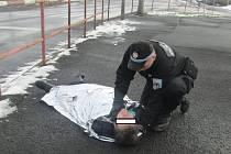Strážníkům se nepodařilo ženu probrat. Podle lékaře prodělala otravu alkoholem.