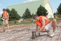 ZÁKLADY. Dělníci připravují základní plochu haly.