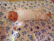 Filip Novák se narodil mamince Štěpánce Kuklíkové z Chomutova v pátek 17.2.2017 v 7:20 hodin. Tehdy malý Filípek vážil 3,51 kg a měřil 51 cm. Domů si ho z kadaňské porodnice poveze tatínek Vladimír Novák společně s tříletým bráškou Markem Novákem.