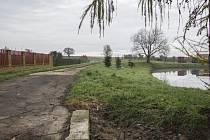 Rybník v Sušanech.